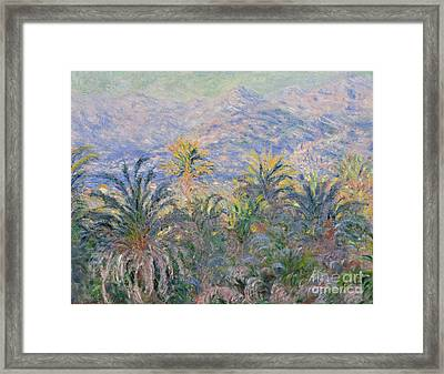 Palm Trees At Bordighera, 1884  Framed Print by Claude Monet