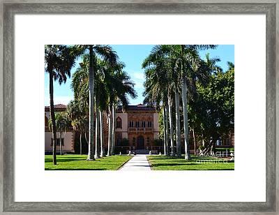 Palm Trees At Ca D' Zan  Framed Print by Karen Francis