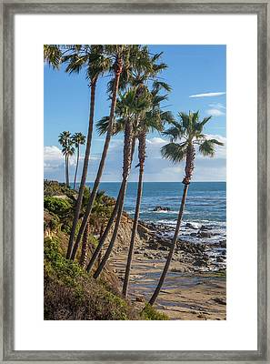Framed Print featuring the photograph Palm Trees At Monument Point Laguna Beach by Cliff Wassmann