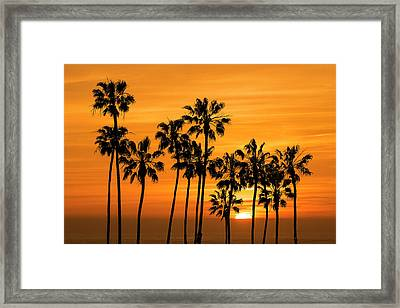 Framed Print featuring the photograph Palm Trees At Sunset By Cabrillo Beach by Randall Nyhof