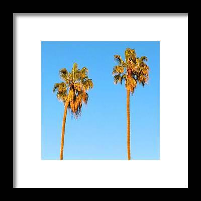 California Framed Prints