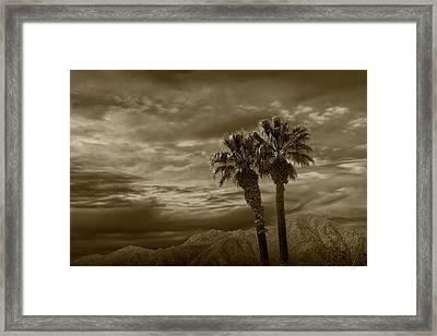 Framed Print featuring the photograph Palm Trees By Borrego Springs In Sepia Tone by Randall Nyhof