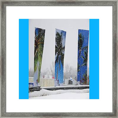 Palm Trees In Snowstorm Framed Print by Lj White
