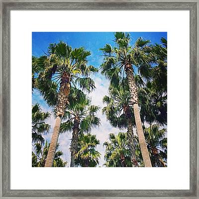 #palm #trees Just Make Me #smile Framed Print