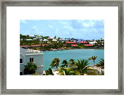Palm Trees Of Oyster Bay Framed Print by Karen Francis
