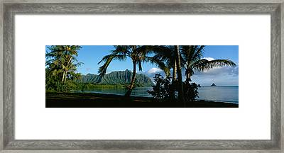 Palm Trees On The Waterfront, Kaneohe Framed Print by Panoramic Images