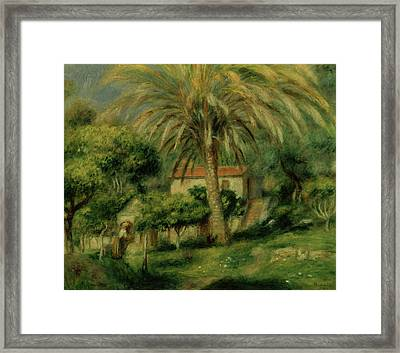 Palm Trees Framed Print by Pierre Auguste Renoir