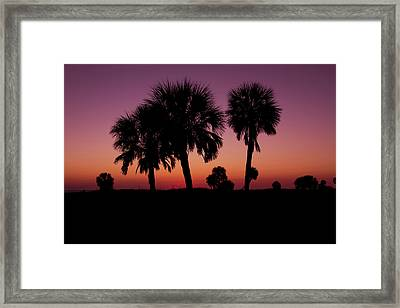 Framed Print featuring the photograph Palm Trees Silhouette by Joel Witmeyer