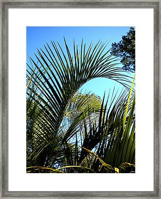 Framed Print featuring the painting Palmetto 2 by Renate Nadi Wesley
