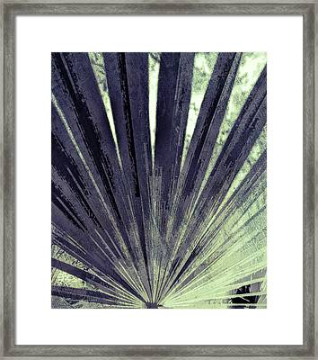 Palmetto Abstract No. 5 Framed Print by Marvin Spates