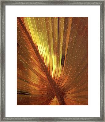 Palmetto Embrace-golden Framed Print by Marvin Spates