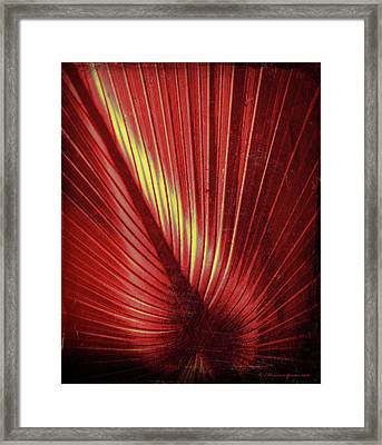 Palmetto Embrace Red Yellow Framed Print