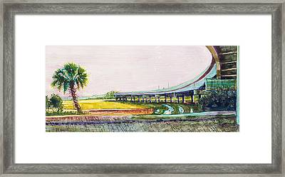 Palmetto Flyover Framed Print
