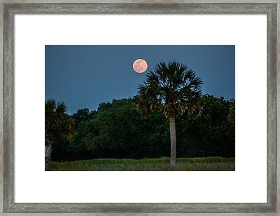 Framed Print featuring the photograph Palmetto Full Moon by RC Pics
