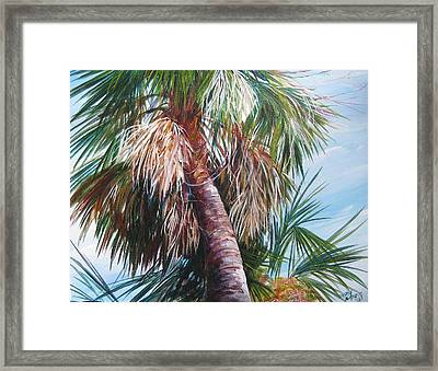 Palmetto In Acrylics Framed Print