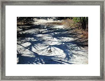 Palmetto Shadows Framed Print