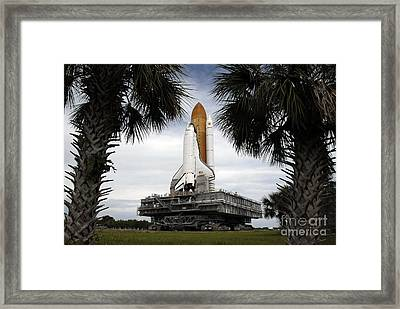 Palmetto Trees Frame Space Shuttle Framed Print by Stocktrek Images