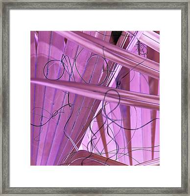 Lines, Curves And Highlights Framed Print