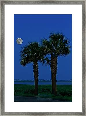 Framed Print featuring the photograph Palms And Moon At Morse Park by Bill Barber