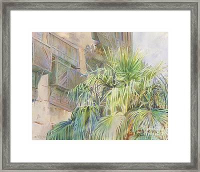 Palms And Shutters Framed Print