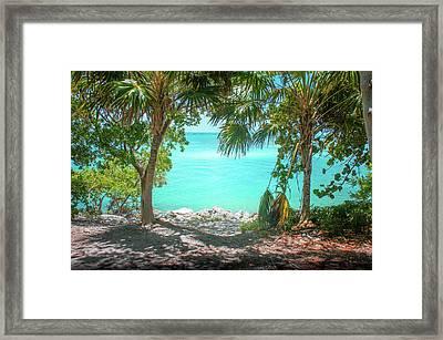 Palms In Key West Framed Print