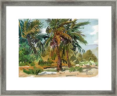 Palms In Key West Framed Print by Donald Maier