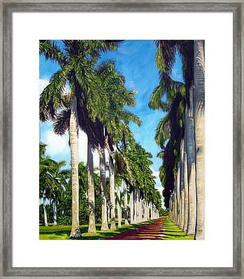 Palms Framed Print by Jose Manuel Abraham