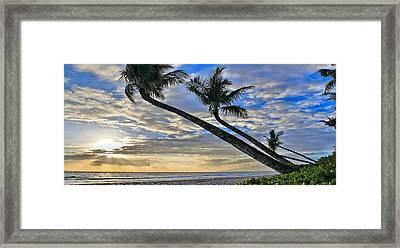 Palms Of Kaanapali Framed Print