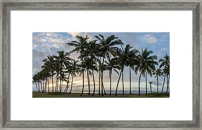 Palms Of Kauai Framed Print