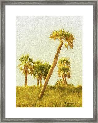 Palms On Canvas Framed Print