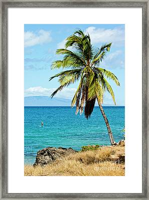Framed Print featuring the photograph Palms On Hawaiian Beach 12 by Micah May