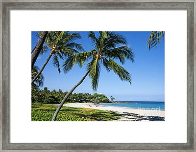 Palms Over Beach II Framed Print by Ron Dahlquist - Printscapes