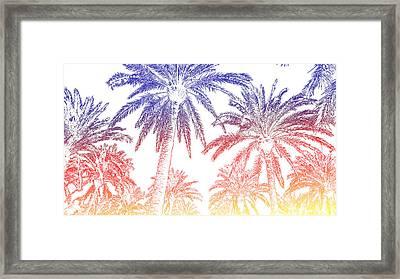 Palms Framed Print by Tsvetelina Pelteshka