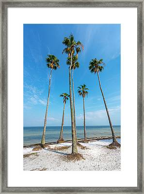 Palms Up Framed Print by Marvin Spates