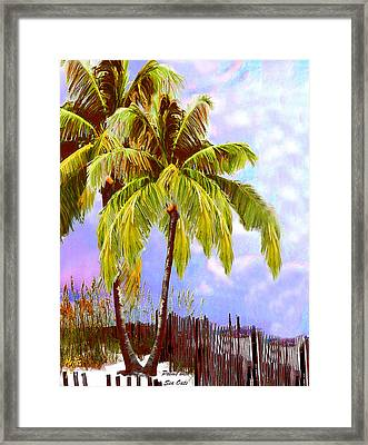 Palms With Sea Oats Framed Print