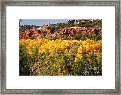 Palo Duro Canyon Fall Colors Framed Print by Fred Lassmann