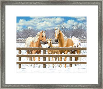 Palomino Appaloosa Horses In Snow Framed Print by Crista Forest