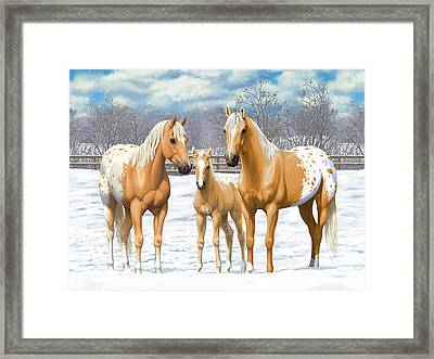 Palomino Appaloosa Horses In Winter Framed Print by Crista Forest