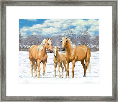Palomino Horses In Winter Pasture Framed Print by Crista Forest