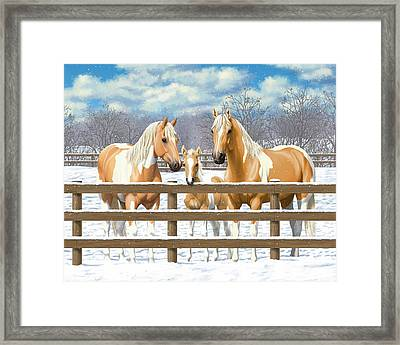 Palomino Paint Horses In Snow Framed Print