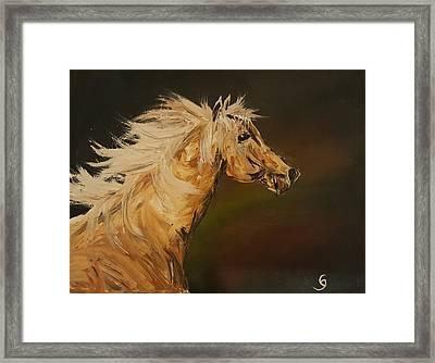 Palomino Running Wild                     85 Framed Print