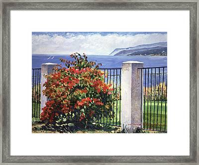 Palos Verdes Shore  Framed Print