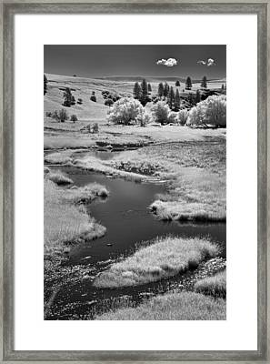 Palouse Back Roads Framed Print