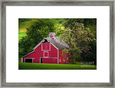 Palouse Barn Number 9 Framed Print by Inge Johnsson