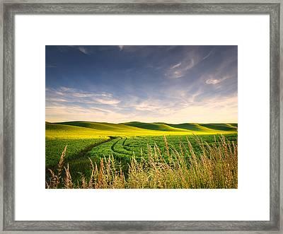 Framed Print featuring the photograph Palouse Bounty by Dan Mihai