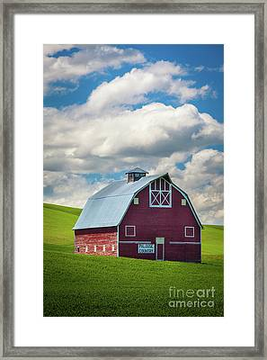 Palouse Country Framed Print by Inge Johnsson