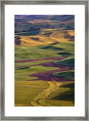 Palouse Hills Framed Print by Mike  Dawson