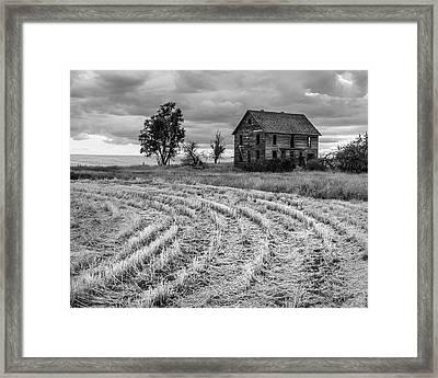 Palouse Homestead 3286 Framed Print