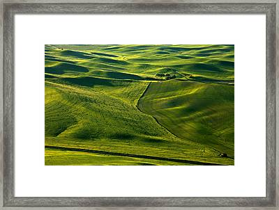 Palouse Patterns Framed Print by Mike  Dawson