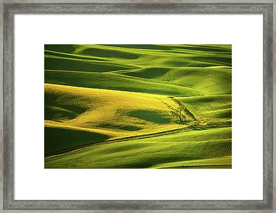 Framed Print featuring the photograph Palouse Shades Of Green by Dan Mihai